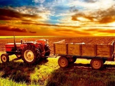 С Днем работников сельского хозяйства Украины