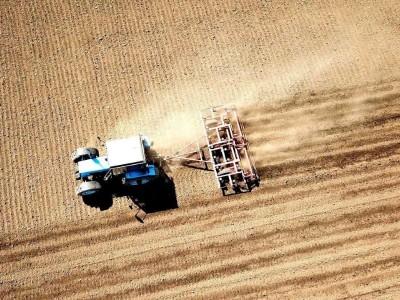 Как правильно подготовить почву перед посевом
