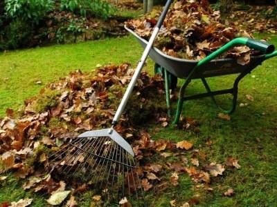 Выбираем садовые пылесосы правильно